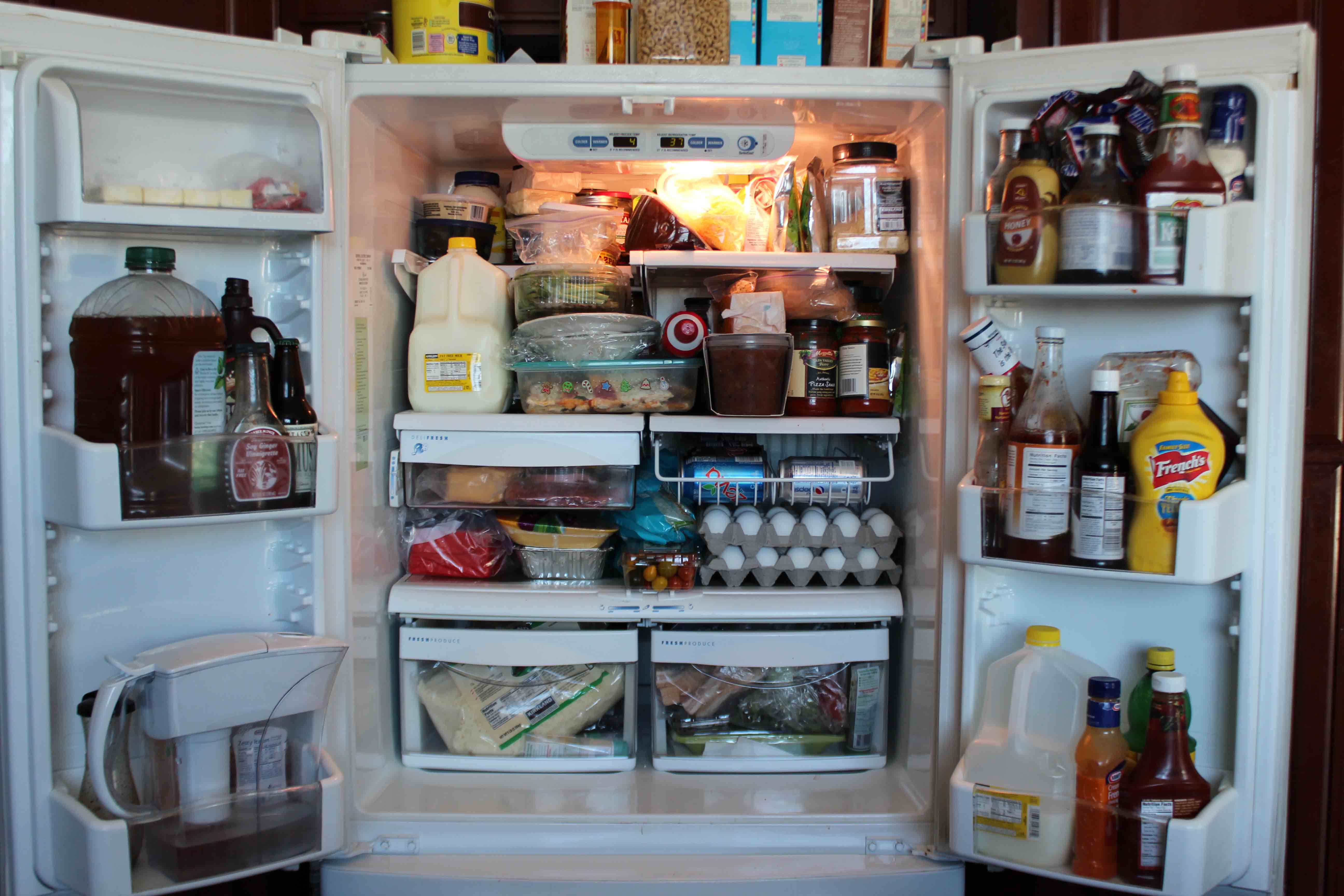 My Dirty Refrigerator Common Sense Country Girl
